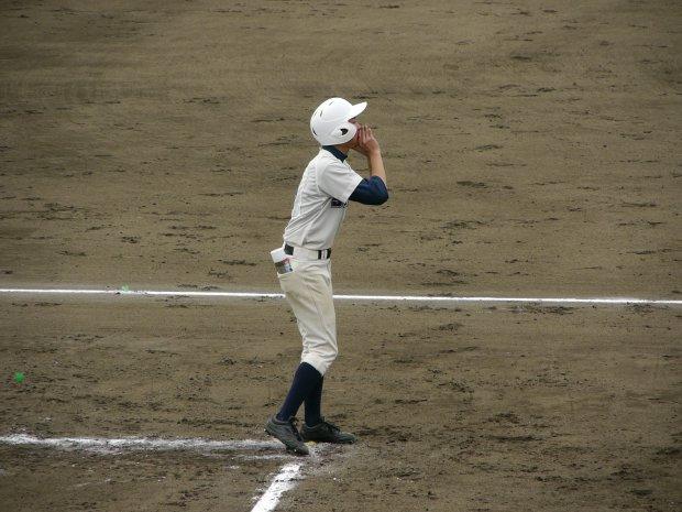 平成24年度栃木県高等学校野球春季大会
